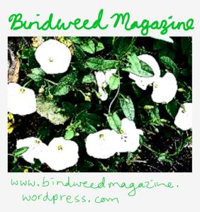 Bindweed Magazine.png