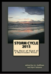 Storm Cycle 2015 Anthology.jpg